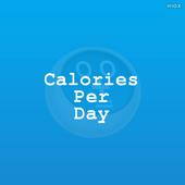 Average Calories Per Day Calci