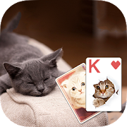 Solitaire Cute Cats Theme