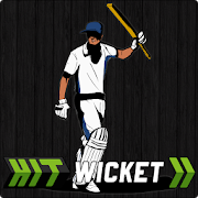 Hit Wicket Cricket - County 4.1.1