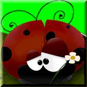 Beetle Challenge 1.0