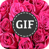 ورود متحركة : صور GIF 12.1