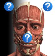 Anatomy Quiz Free 2.1
