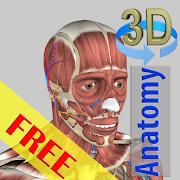 com.hssn.anatomy3dlite icon