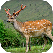 Deer Sniper: Hunting Game 1.00