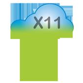 X11 Server 2.6