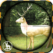 Animal Hunt Sniper Shooter 1.0