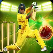 Cricket Games 2017 Free 3D 2.1