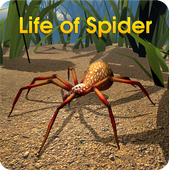 Life of Spider 1.1