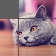 Jigsaw Puzzle: Cute Animals 1.1