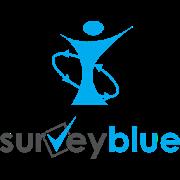 IOB Surveyblue 1.46
