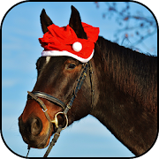 Cute horse wallpapers 10.95