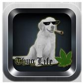 #thuglife photo sticker maker 1.0