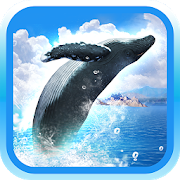 REAL WHALES Find the cetacean! 1.0.6