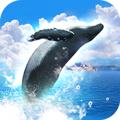 REAL WHALES Find the cetacean. 1.0.7