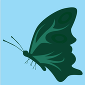 Butterfly Surge 1.6