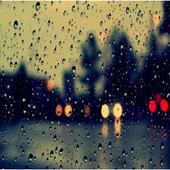 Rain Sounds 1.1
