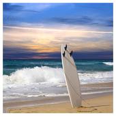 Surf Jigsaw 1.3
