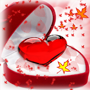 Valentine Diy Photo HD 1.0
