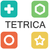 TetricaPushki TechPuzzle