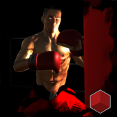 Real Punch 3D Boxing 1.4