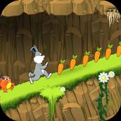 Jungle Bunny Saga 1.0.0