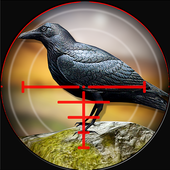 Forest Crow Hunter 3D - Sniper Shooting Simulation 1.0