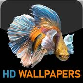 HD FISH WALLPAPERS 1.0