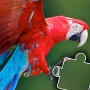 Yoger Jigsaw - Fun animal puzzles for kids👦👧🐤 2019.47