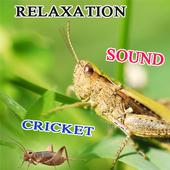 Cricket Nature Sounds 2.0