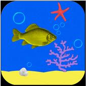 Speedy FishKeyboardWarrior GamesArcade