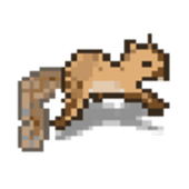 Jumpy Squirrel 1.0.0.0