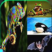 Animal Quiz Games 1.0
