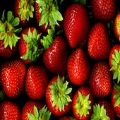 Fruit Wallpapers 1.0