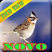 Canto de Tico Tico Completo HD 1.7