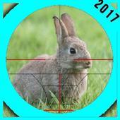 Rabbit Hunter 2017 1.1