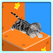Kitten Infinite Stair 1.3.2