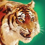 Talking Tiger 1.0.9