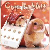 Cup Rabbit Theme 1.1.6
