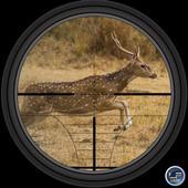 Sniper Deer Hunter 3D 1.0