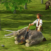 Sniper Hunt: Safari Survival 1.1