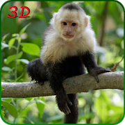 Monkey Simulator 3D 1.3