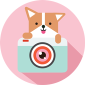 Cozy Camera-Photo&Video Editor 01.02.08
