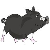 Bubbles The Mini Pig 1.1