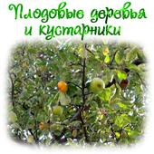 Плодовые деревья и кустарники 1.0