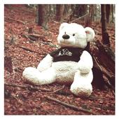 Teddy Bear Live Wallpaper 1.14