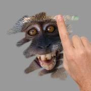 Tebak Gambar Binatang 10.0