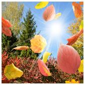 Autumn Landscape Puzzle 1.0