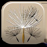 Federal Noxious Weeds Key 1.0.3
