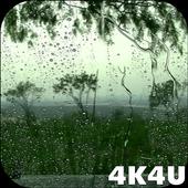 4K Rain Drops on Window Video Live Wallpaper 1.1