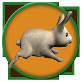 Run Rabbit Run 1.01